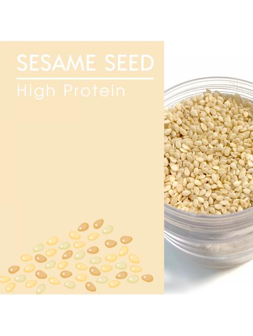 Sesame Seed, White